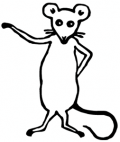 image: mouse rodent animal